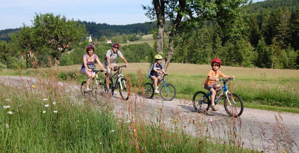 Comment faire la route des vins à vélo grâce au GPS Vélo?